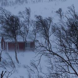Maartse sneeuwbui op de Lofoten