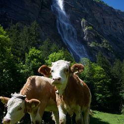 Het dal van 72 watervallen