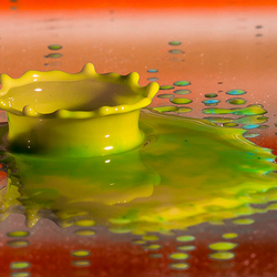 Jellow splash