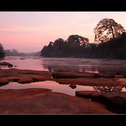 Surinamerivier