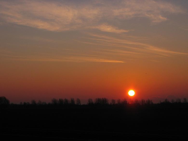 Sun will be shining - Genomen met Canon Powershot A80, vanuit mijn raam.