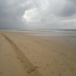 Strandspoor