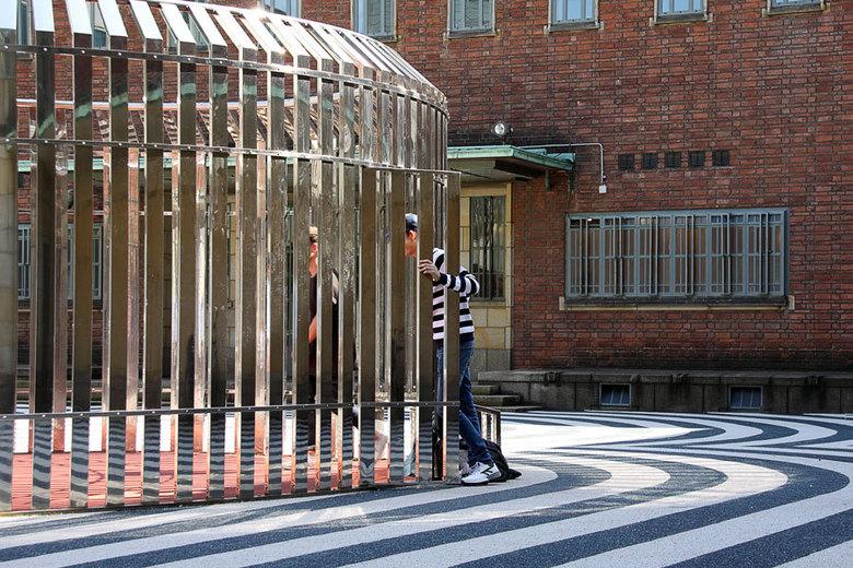 Zebra 1 -