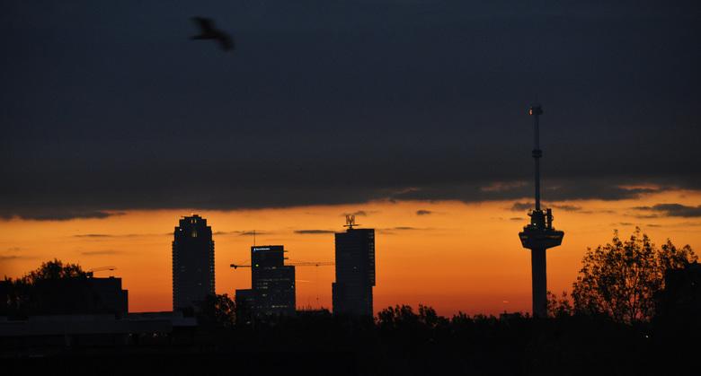 Skyline van Rotterdam met zonsopkomst - Bij aankomst in de parkeergarage van mijn werk zag ik een prachtige skyline van Rotterdam met de Euromast en e