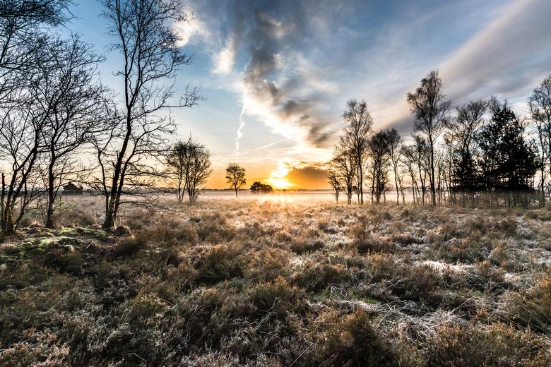 Frosty sunrise -