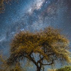 Melkweg, Nambie