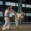 Zoom Bootcamp 2017 Karate