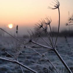 Een winterse vrijdagochtend