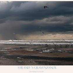 Strand 's-Gravenzande