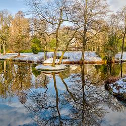 Winters Oranjewoud
