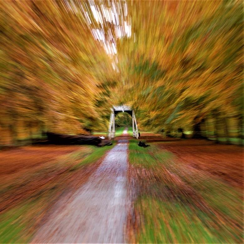 Fast Fall -