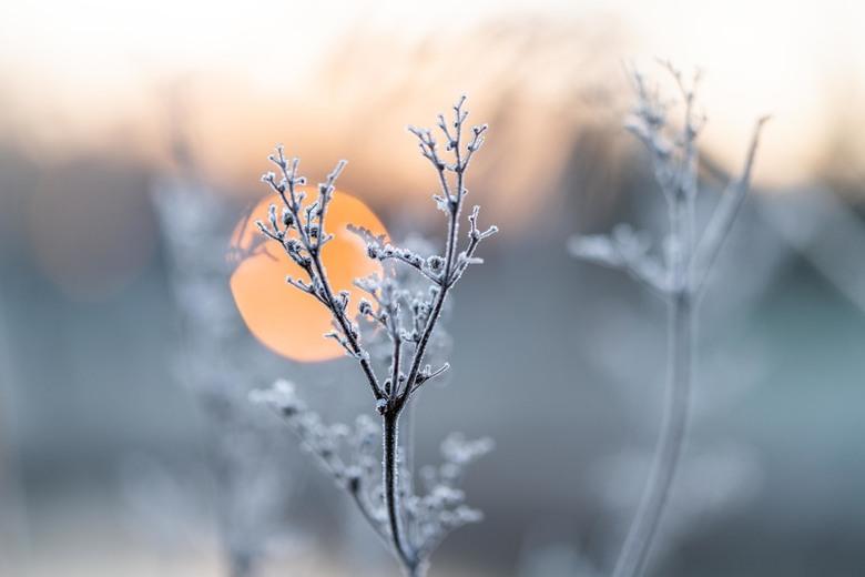 Winter is gearriveerd - En de zon natuurlijk
