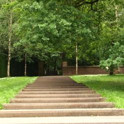 park Arnhem