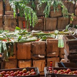 op de bananenmarkt 1 1903028218Rmw