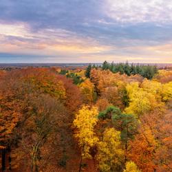 Herfst, wat ben je mooi!