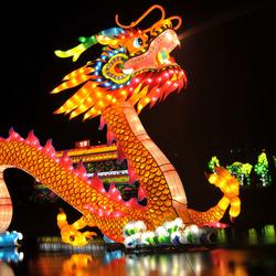 CHINA LIGHT DRAGON ROTTERDAM