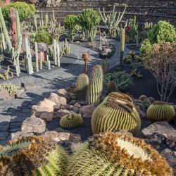 Lanzarote 24 - Jardín de Cactus in Guatiza