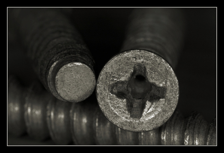 Screws - D70, 150mm macro, ringflitser.