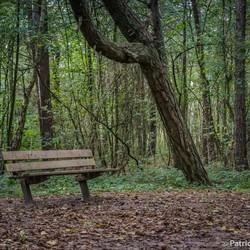 Vip-herfst-seats