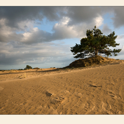 Drenthe, Ackinger zand