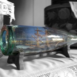 the world in a bottle