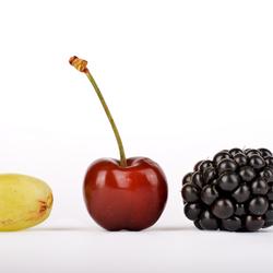 dit is fruit.