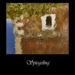 Spiegeling (Born)