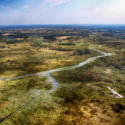 Okavango Delta -3-