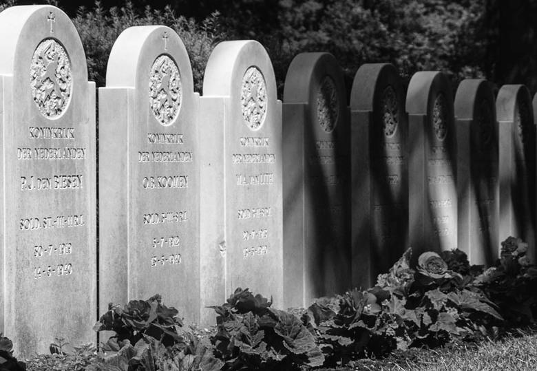 Gebbeberg - Kapot geschoten jonge mensen. <br /> Als waardering  een graf op een ereveld.