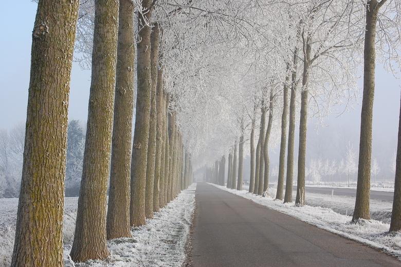 Kan er toch geen afscheid van nemen.... - ...van de winterse plaatjes.