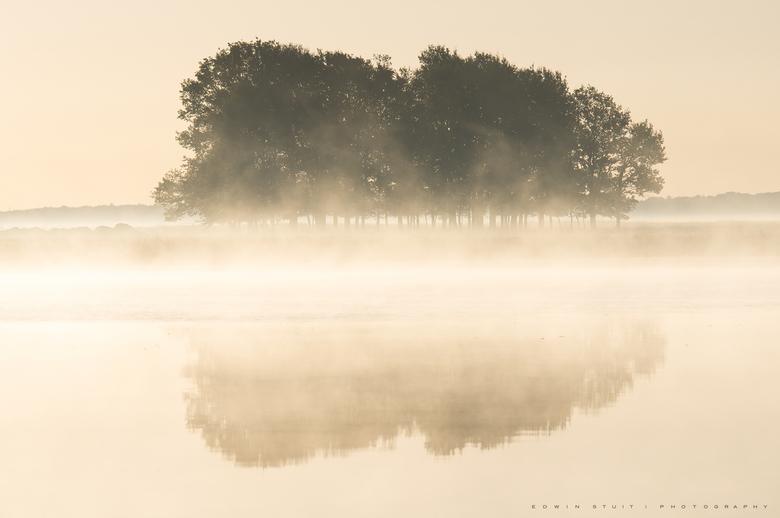 Misty trees - Een prachtige nevelige ochtend op het Dwingelderveld.<br /> <br /> Dank jullie wel voor de leuke reacties op mijn vorgie foto !