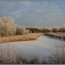 Winterwonderland III