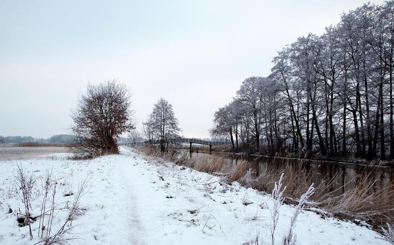 nog even....... - een vervolg Hoornder-meden in winterse sferen <br /> Iedereen bedankt voor de reacties en goede raad vorige foto,s <br /> vr gr ja