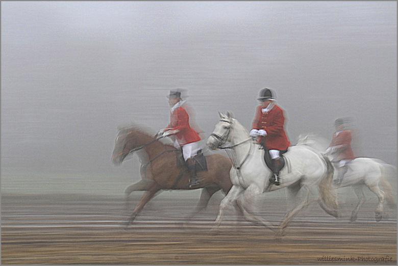 Misty horses - Gister was de jachtrit van de koninklijke jachtvereeniging .<br /> Behoorlijk mistig en in galop reden de paarden achter de honden aan