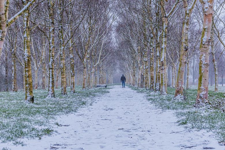 sneeuw! - Één middag voor een paar uur sneeuw!