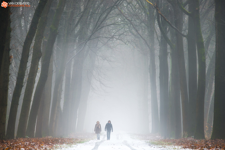 """On a misty and cold morning - Op een mistige en koude ochtend in de Achterhoek<br /> <a href=""""http://www.vanderveerfotografie.nl/serie/twente-en-acht"""