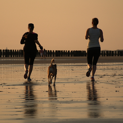 Sunset beach run threesome