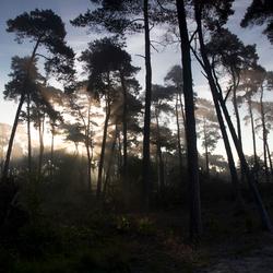 stralende zonsopkomst