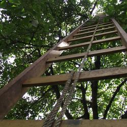 Kersen pluk ladder