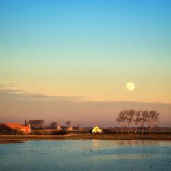 Plan Tureluur en de maan....