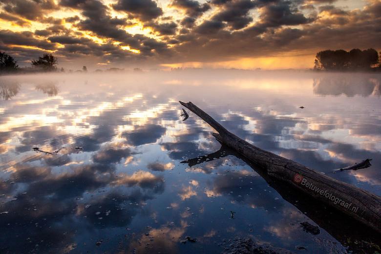 Goodmorning Sunshine.......