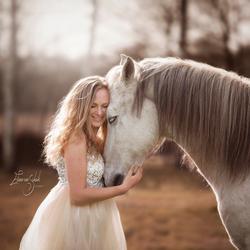fairytale white horse