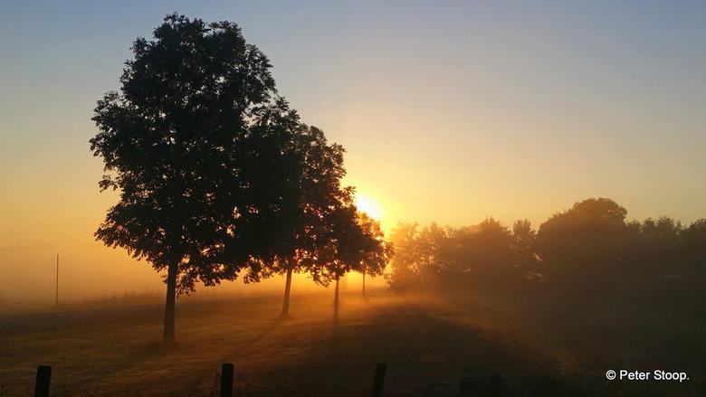 Zonsopkomst bij Hippolytushoef - Een wat mistige zonsopkomst bij Hippolytushoef.