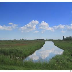 Polderlandschap in de Zaanstreek