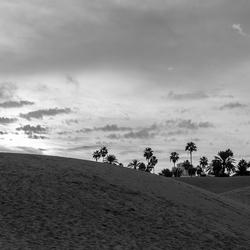woestijn ZW