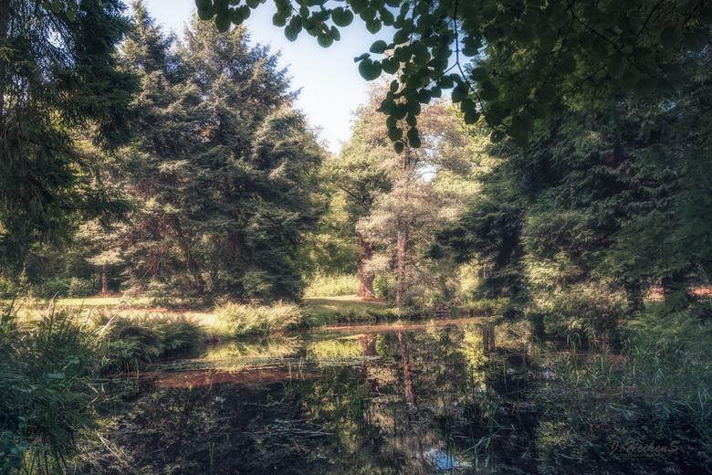 In een magisch bos - In het park bij het kasteel Rosendael...