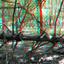 Grebbeberg Rhenen 3D