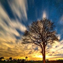 Underneath a stary sky