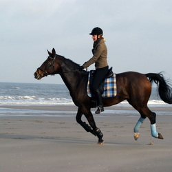 Horse riding on the beach 2