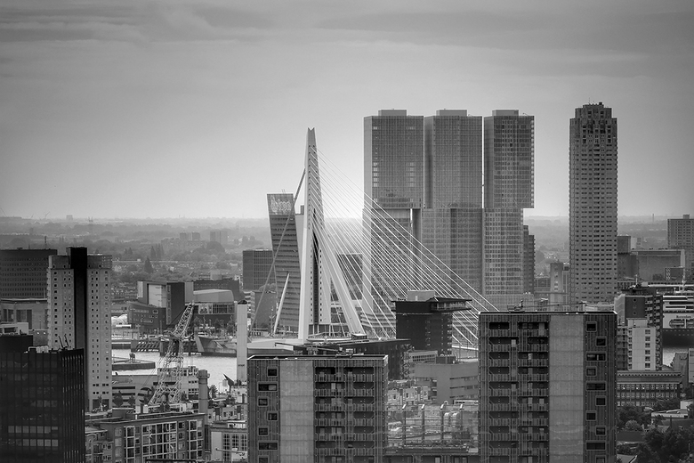 Rotterdam  - Rotterdam is de 'rising star' van Europa als één van de meest aantrekkelijke steden om te bezoeken.
